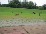 Posjeta Obučnog centra za službene pse