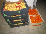 Donacija voća od Crvenog križa