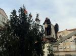 Ukrašavanje bora na gradskom trgu