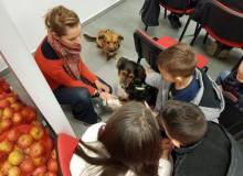 Predavanje Zašto pas-zašto pomagač