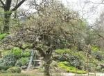 Posjet Botaničkom vrtu