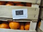 Donacija mandarina od Centra Stančić